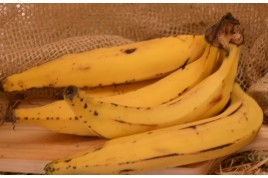 Banana - terra