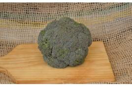 Brócolis - japonês