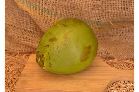 Côco - Verde