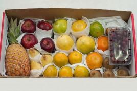 Kit Frutas Citrus